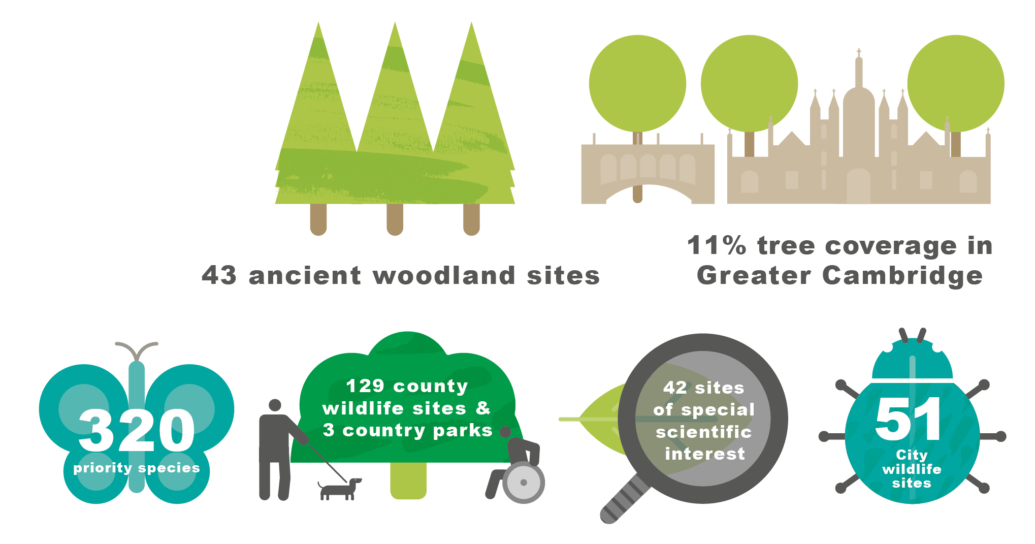 Infographic showing that Greater Cambridge has 42 Sites of Special Scientific Interest; 43 ancient woodland sites; 320 priority species; 129 County Wildlife sites and 51 City Wildlife sites; 3 Country parks and 11% tree cover.